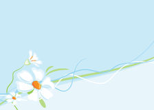 Flowers background horizontally Royalty Free Stock Photography