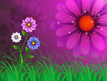Flowers Background Means Garden Spring And Blooming Stock Image