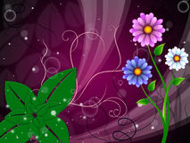 Flowers Background Means Stem Buds And Petals. Flowers Background Meaning Stem Buds And Petals stock illustration