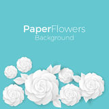 Flowers background with paper blooming white 3D roses with leaves. Vector illustration greeting card design with place for text in blue colors Stock Photos