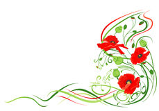 Flowers background with poppies Royalty Free Stock Photos