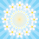 Flowers on the background radiation Royalty Free Stock Image
