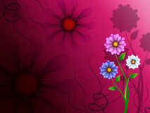 Flowers Background Shows Blossoming Growth And Nature Stock Photos