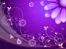 Flowers Background Shows Blossoms Buds And Petals. Flowers Background Showing Blossoms Buds And Petals stock illustration