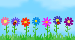 Flowers on the background of the sky. Vector illustration Stock Image