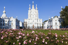 Flowers on the background of the Smolny Cathedral. Saint Petersburg. Royalty Free Stock Images
