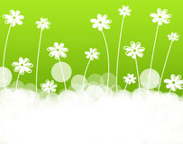 Flowers background Stock Image