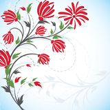 Flowers background vector Royalty Free Stock Images