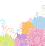 Flowers background,vector Royalty Free Stock Image