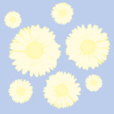 Flowers background (vector) Royalty Free Stock Photos