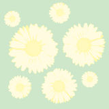 Flowers background (vector) Stock Image