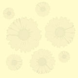 Flowers background (vector) Royalty Free Stock Image