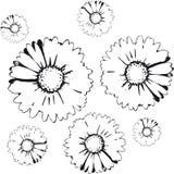 Flowers background (vector) Stock Photos