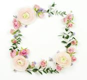 Flowers background. Wreath frame made of  pale pink roses  flowers and eucalyptus branches Stock Images