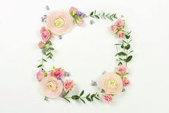 Flowers background. Wreath frame made of  pale pink roses  flowers and eucalyptus branches Royalty Free Stock Photography
