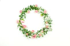 Flowers background. Wreath frame made of  pale pink roses  flowers and eucalyptus branches. On a white background. Flat lay. top view. copy space Royalty Free Stock Photo