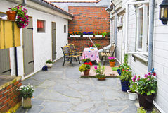 Flowers in the backyard. Different flowers in pot and pans all over round in our backyard at home in Halden. The backyard is a nice and cozy place to be during Royalty Free Stock Image
