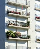 Flowers at balconies Stock Photos