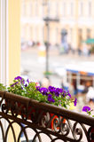 Flowers on balcony Royalty Free Stock Photo