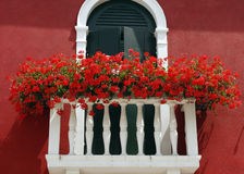 Flowers on a balcony Royalty Free Stock Image