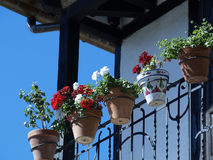 Flowers in the balcony. Pots on the balcony, Salamanca - Spain Royalty Free Stock Photography