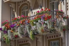 Flowers on the balcony of a luxury house in a classic style stock photos