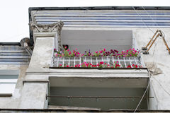 Flowers on the balcony of an old ravaged house Stock Photography