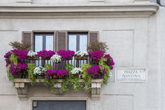 Flowers on a balcony Royalty Free Stock Photos