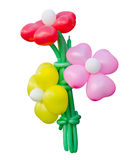 Flowers Balloon Stock Photos