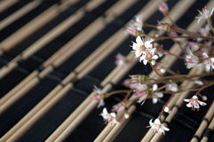 Flowers on bamboo mat Royalty Free Stock Photo