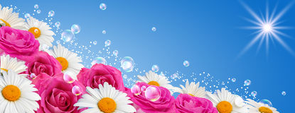 Flowers banner Stock Photo