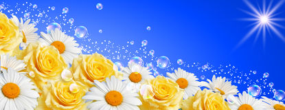 Flowers banner Stock Image