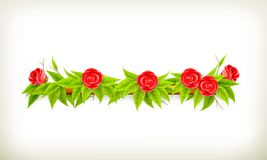 Flowers banner Royalty Free Stock Photos