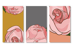Flowers banner design. Header design with roses in . Banners with rose on white background Stock Photos
