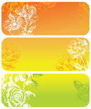 Flowers banners Royalty Free Stock Photos
