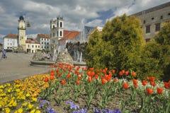 Flowers at Banska Bystrica. Flowers at Namestie SNP square in Banska Bystrica, Slovakia Stock Image