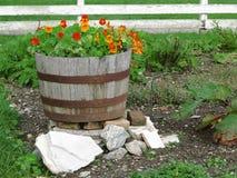 Flowers in Barrel Stock Photo