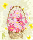 Flowers basket Royalty Free Stock Images