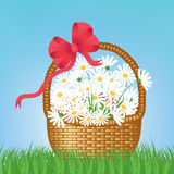 Flowers in basket Stock Images