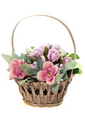 Flowers in a basket Stock Image