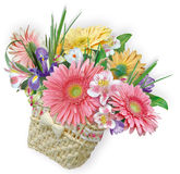 Flowers in basket Royalty Free Stock Image