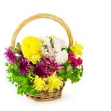Flowers in a basket Royalty Free Stock Photography