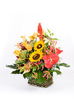 Flowers in basket. Beautiful flower decoration in basket stock images