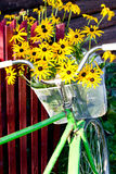 Flowers in a basket Stock Photo