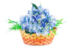 Flowers in basket. Blue fabric flowers in wicker basket isolated on white background Royalty Free Stock Photo