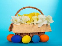 Flowers in basket and bright Easter eggs Royalty Free Stock Images