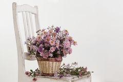 Flowers in a basket on  chair Royalty Free Stock Photo