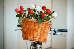 Flowers in basket hanging at bicycle handlebars Royalty Free Stock Photo
