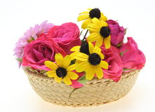 Flowers in the basket Royalty Free Stock Photo