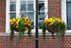 Flowers on basket Stock Photo